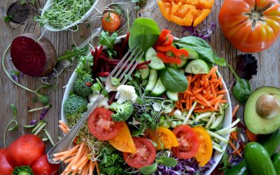Why should you focus on a plant based diet?