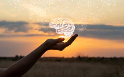 Brain health and diet